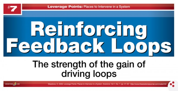 Leverage Points - Reinforcing Feedback Loops